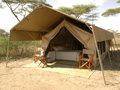 Serengeti Savannah Camps
